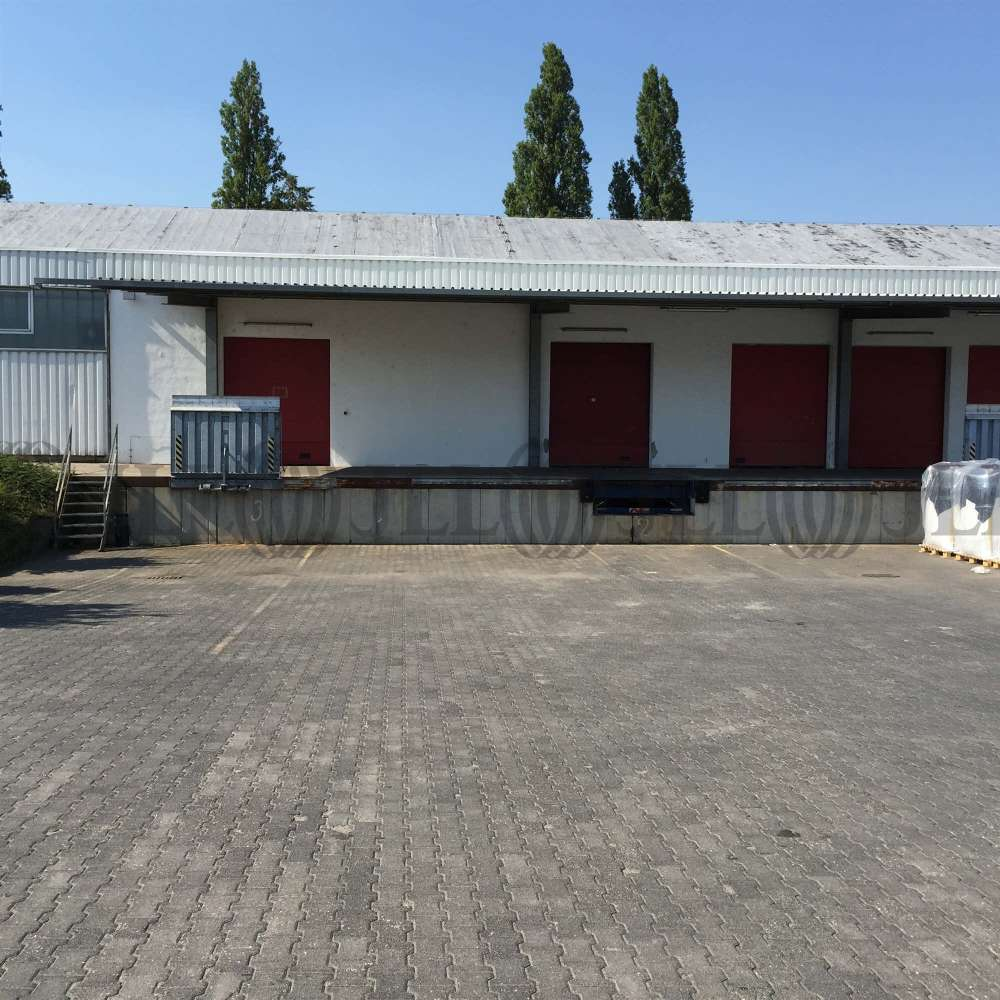 Hallen Flörsheim am main, 65439