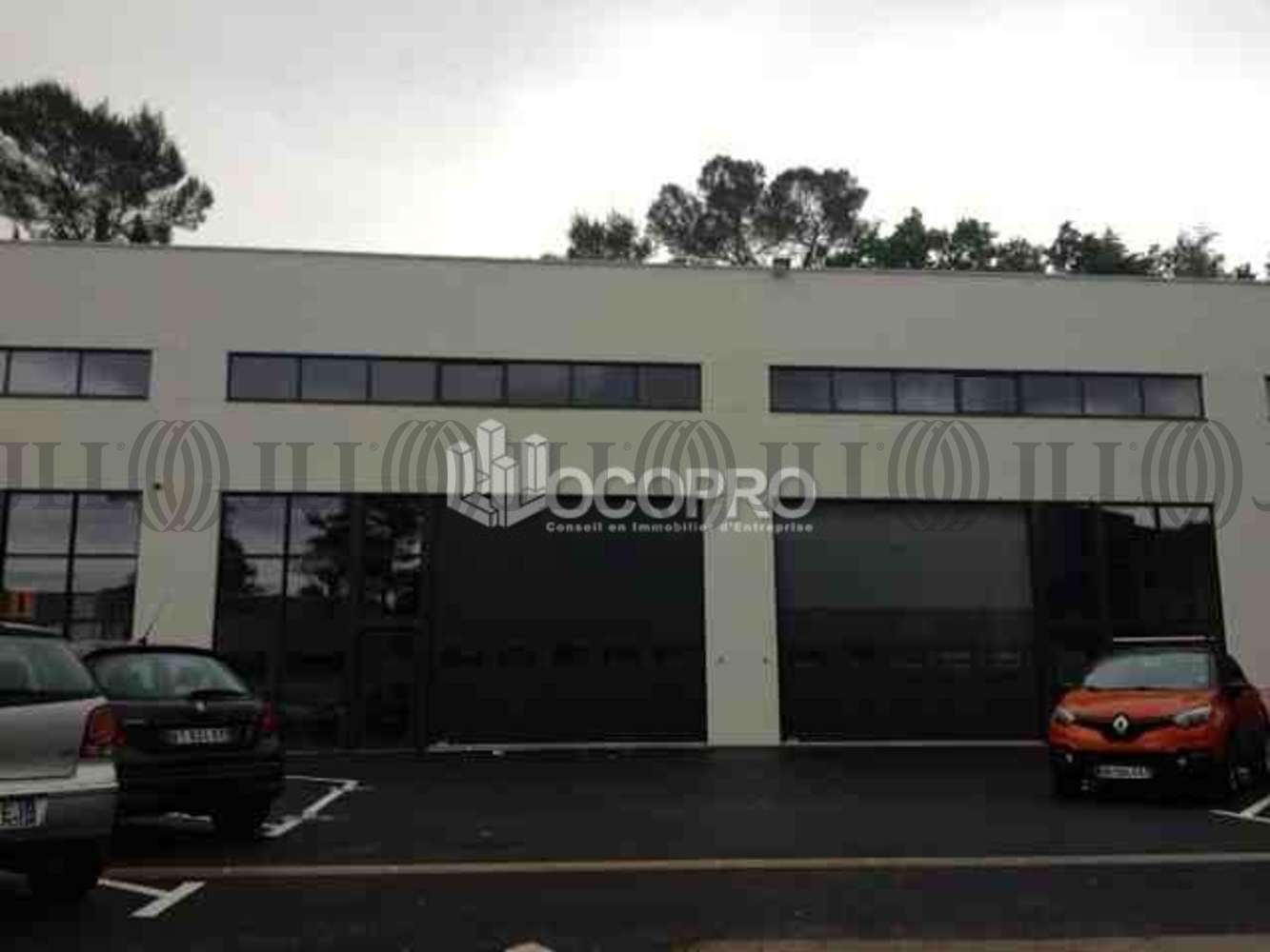 Activités/entrepôt Mouans sartoux, 06370 - ROUTE DE TIRAGON