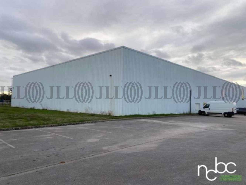 Activités/entrepôt Champforgeuil, 71530