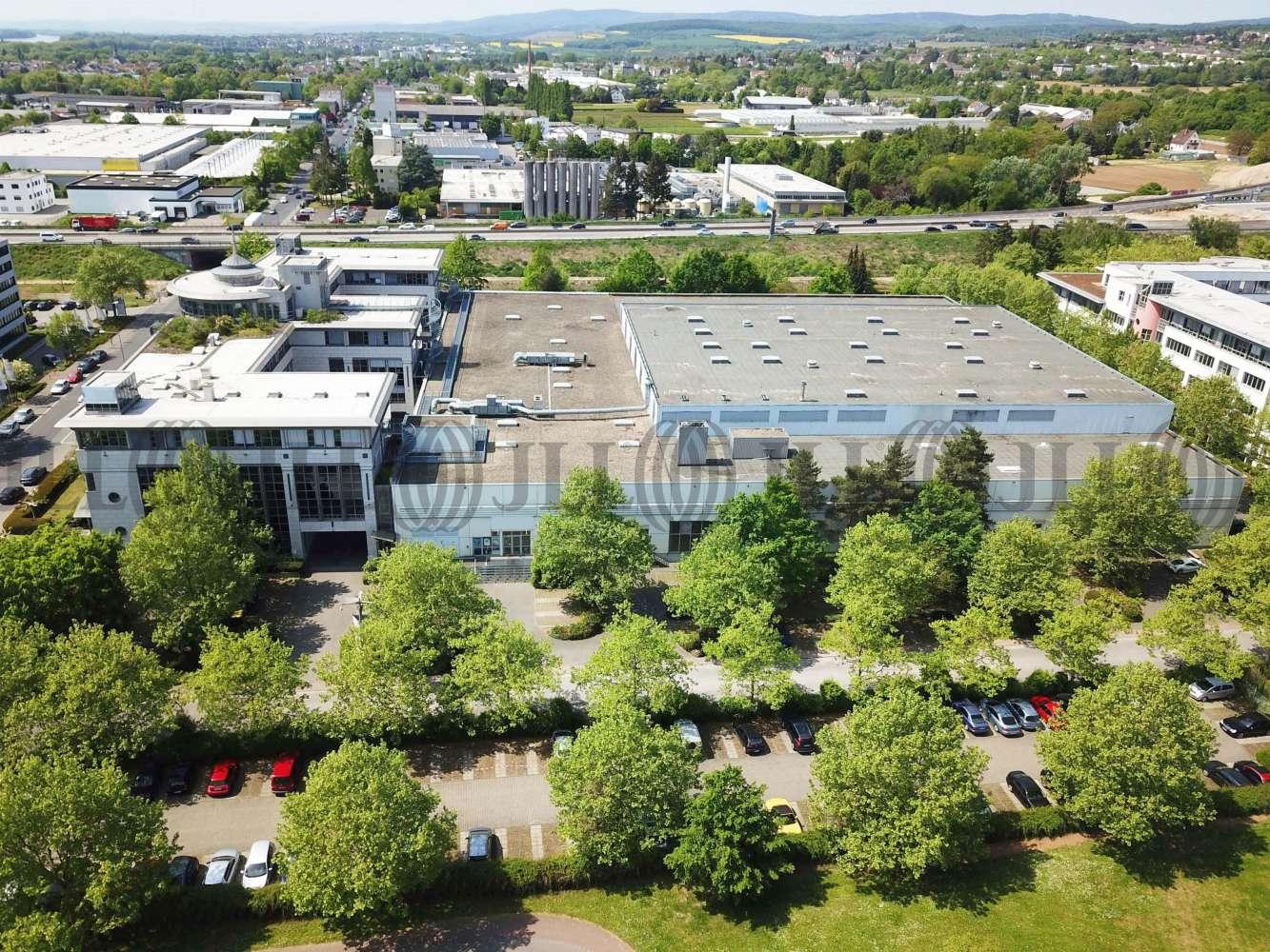 Hallen Wiesbaden, 65203
