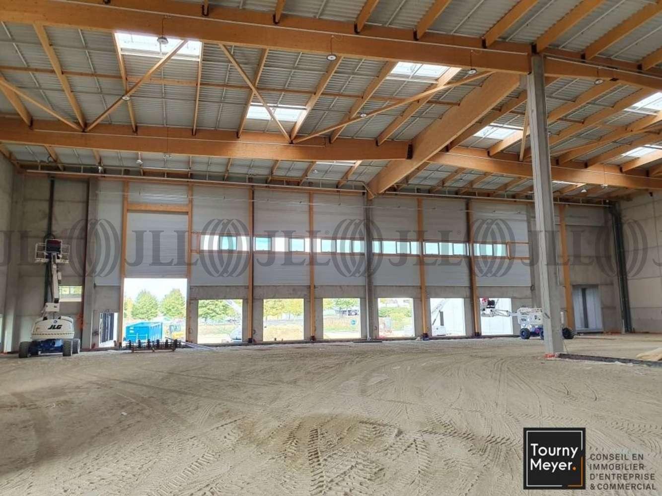 Activités/entrepôt Castelnau d estretefonds, 31620