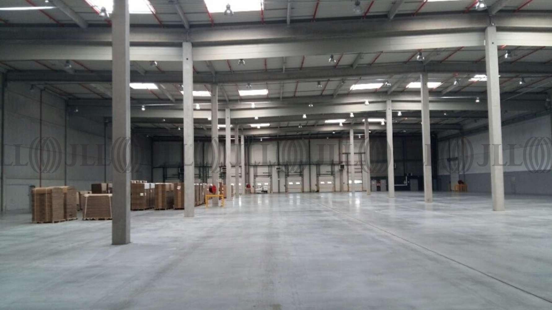 Activités/entrepôt St barthelemy d anjou, 49124