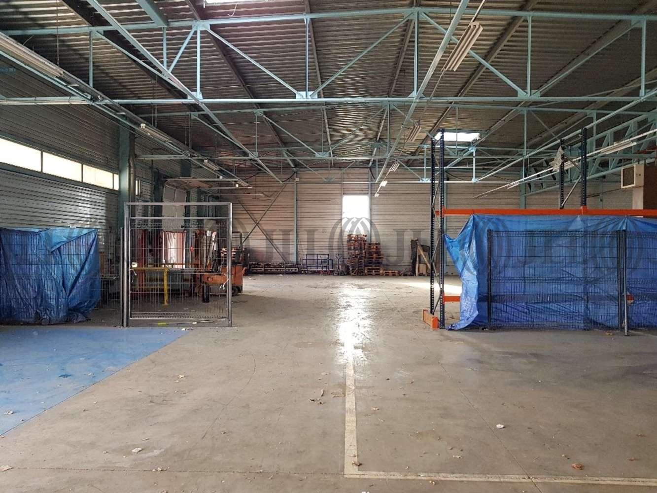 Activités/entrepôt St quentin fallavier, 38070 - 13 AVENUE DES ARRIVAUX