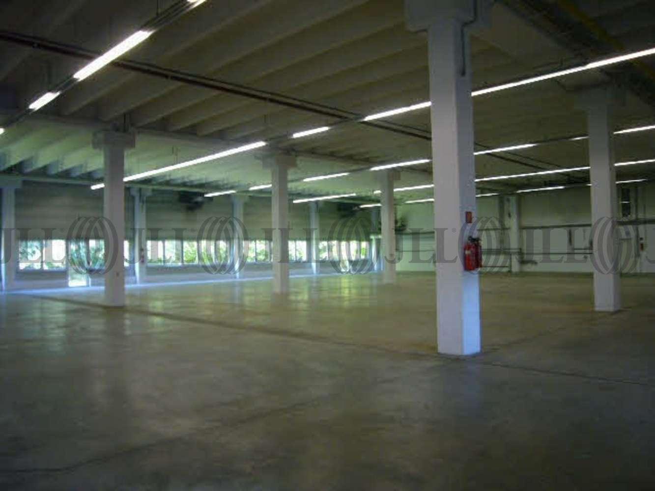 Hallen Köln, 50739