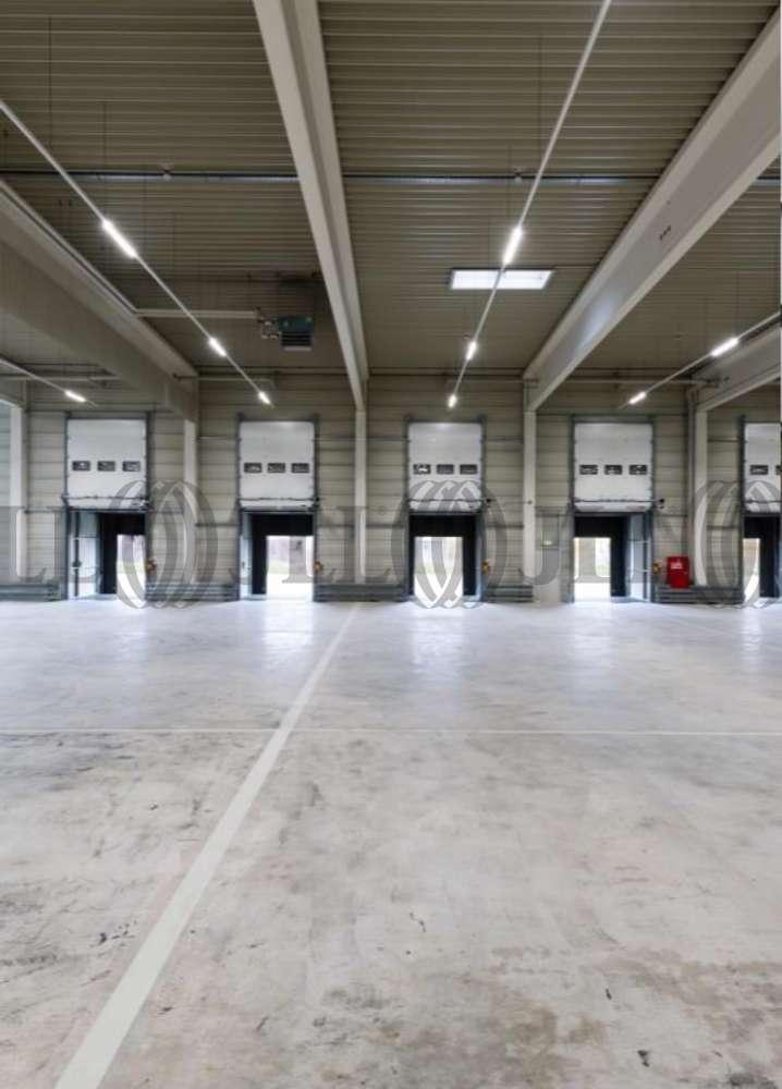 Hallen Langenhagen, 30855