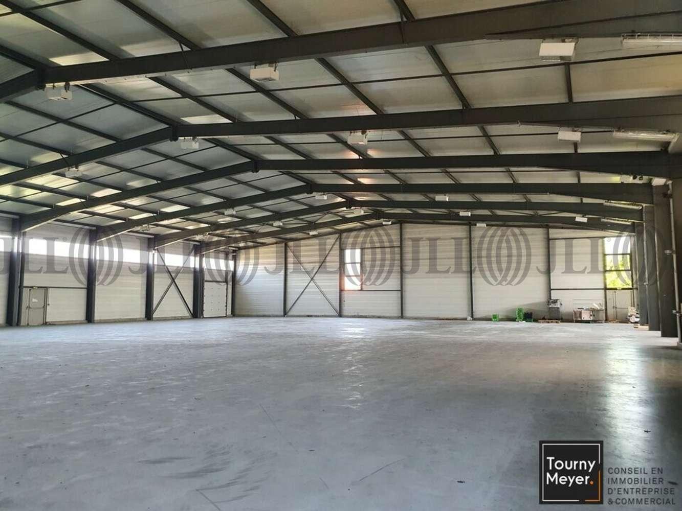 Activités/entrepôt Beauzelle, 31700