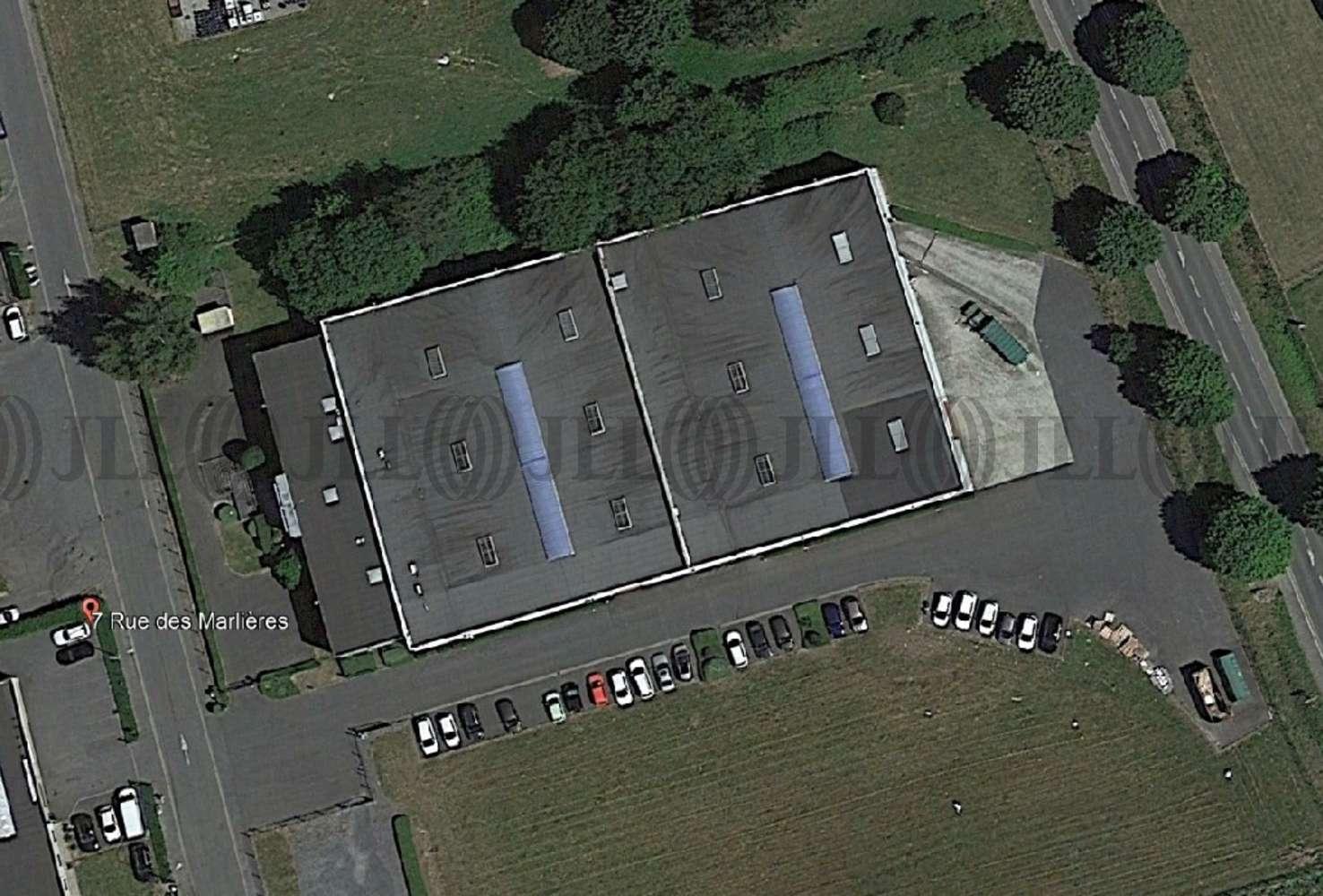 Activités/entrepôt Avelin, 59710