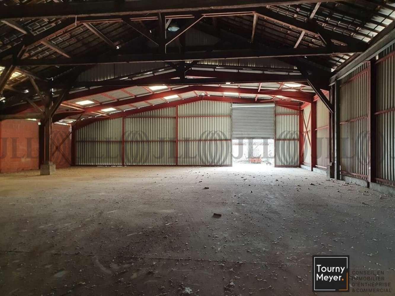 Activités/entrepôt Portet sur garonne, 31120