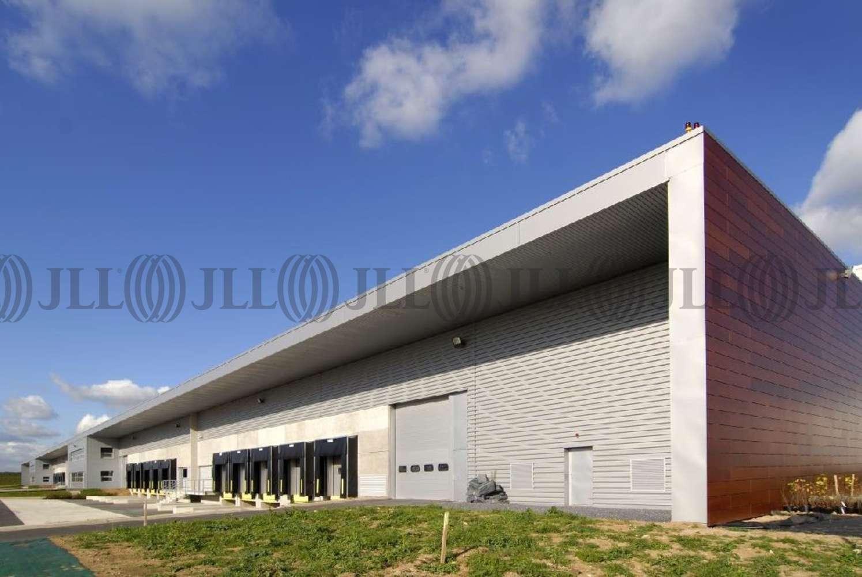 Plateformes logistiques Gonesse, 95500 - TULIPES SUD DC1