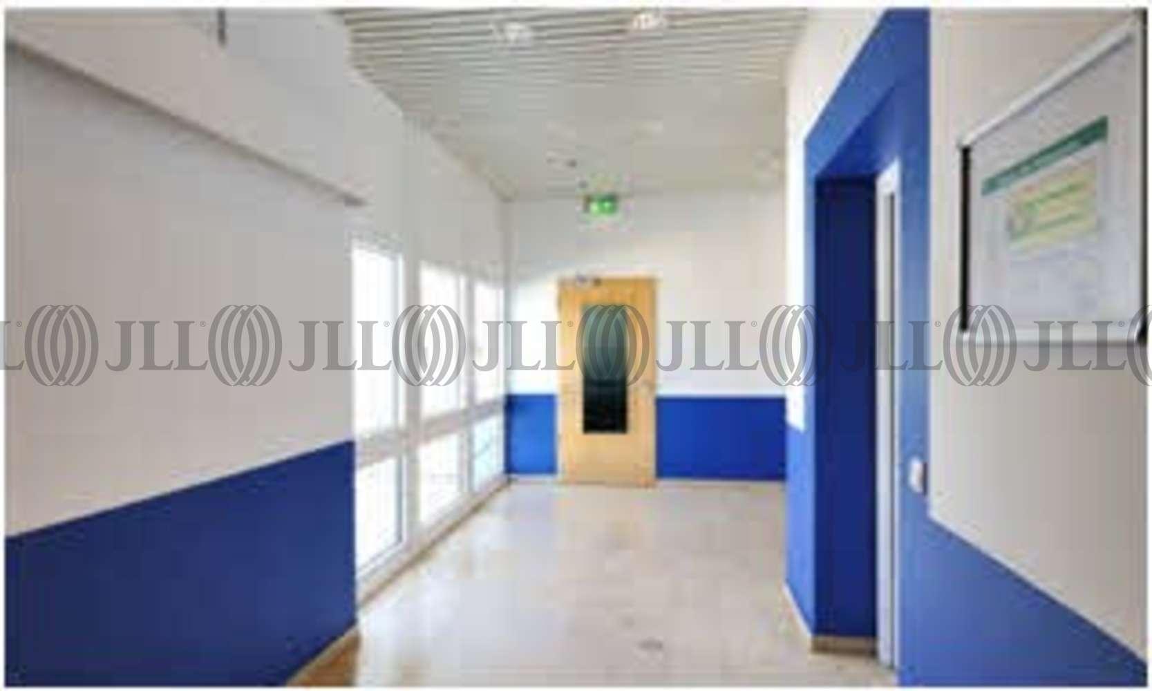 Büros Butzbach, 35510 - Büro - Butzbach - F1723 - 9406507