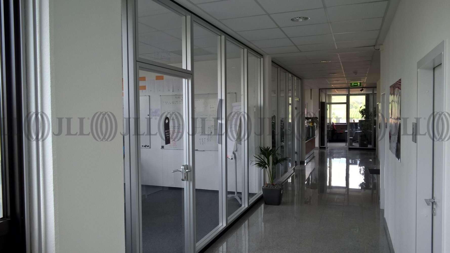 Büros Heidelberg, 69126 - Büro - Heidelberg, Rohrbach - F1815 - 9408608