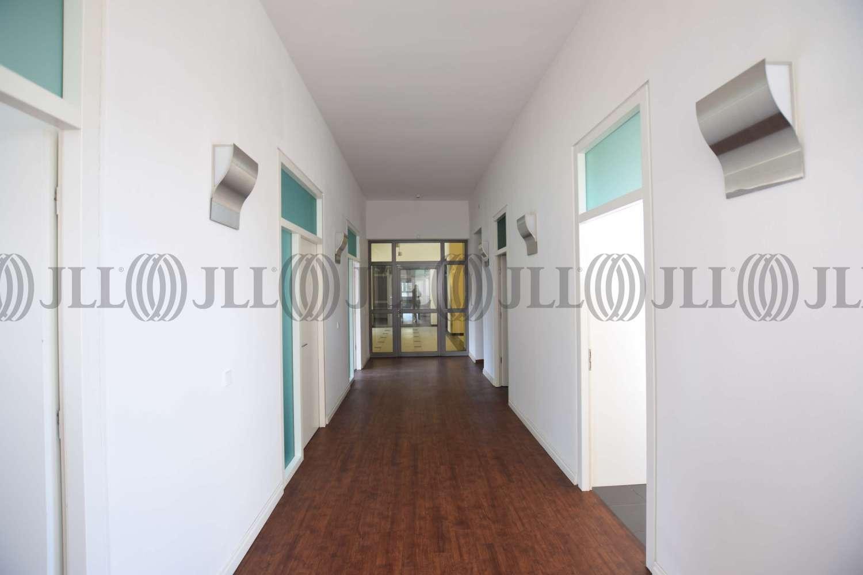 Büros Essen, 45127 - Büro - Essen, Westviertel - D1476 - 9410914