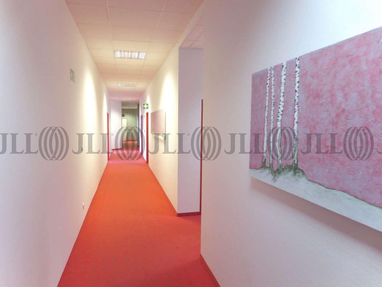 Büros Nürnberg, 90411 - Büro - Nürnberg, Marienberg - M1242 - 9411413
