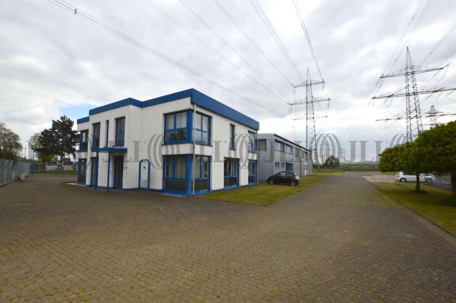 Hallen Meckenheim, 53340 - Halle - Meckenheim - K1181 - 9413847