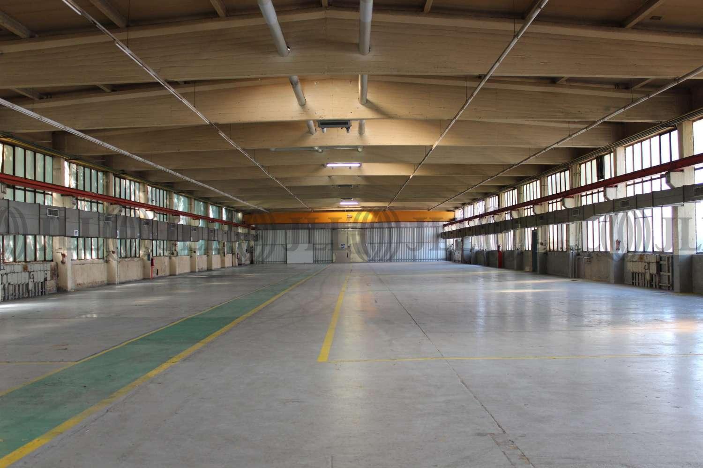 Hallen Salzgitter, 38239 - Halle - Salzgitter, Watenstedt - H1196 - 9414116