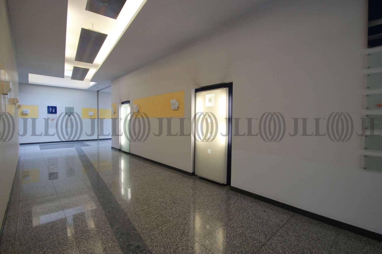 Büros Dreieich, 63303 - Büro - Dreieich, Sprendlingen - F1126 - 9414366