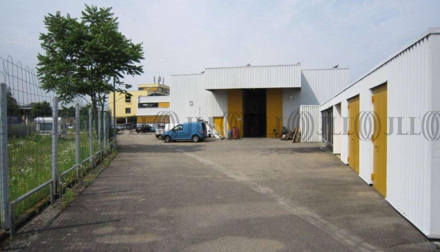 Hallen Heidelberg, 69123 - Halle - Heidelberg, Pfaffengrund - F2093 - 9415151