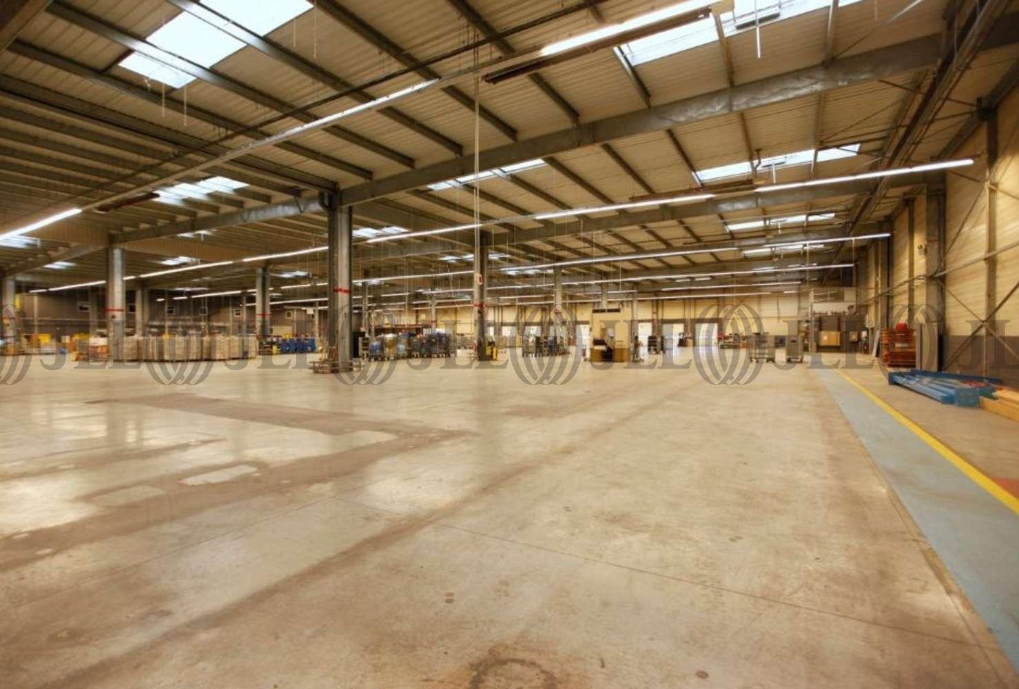 Activités/entrepôt Mitry mory, 77290 - ZA DE MITRY-COMPANS - 9455184