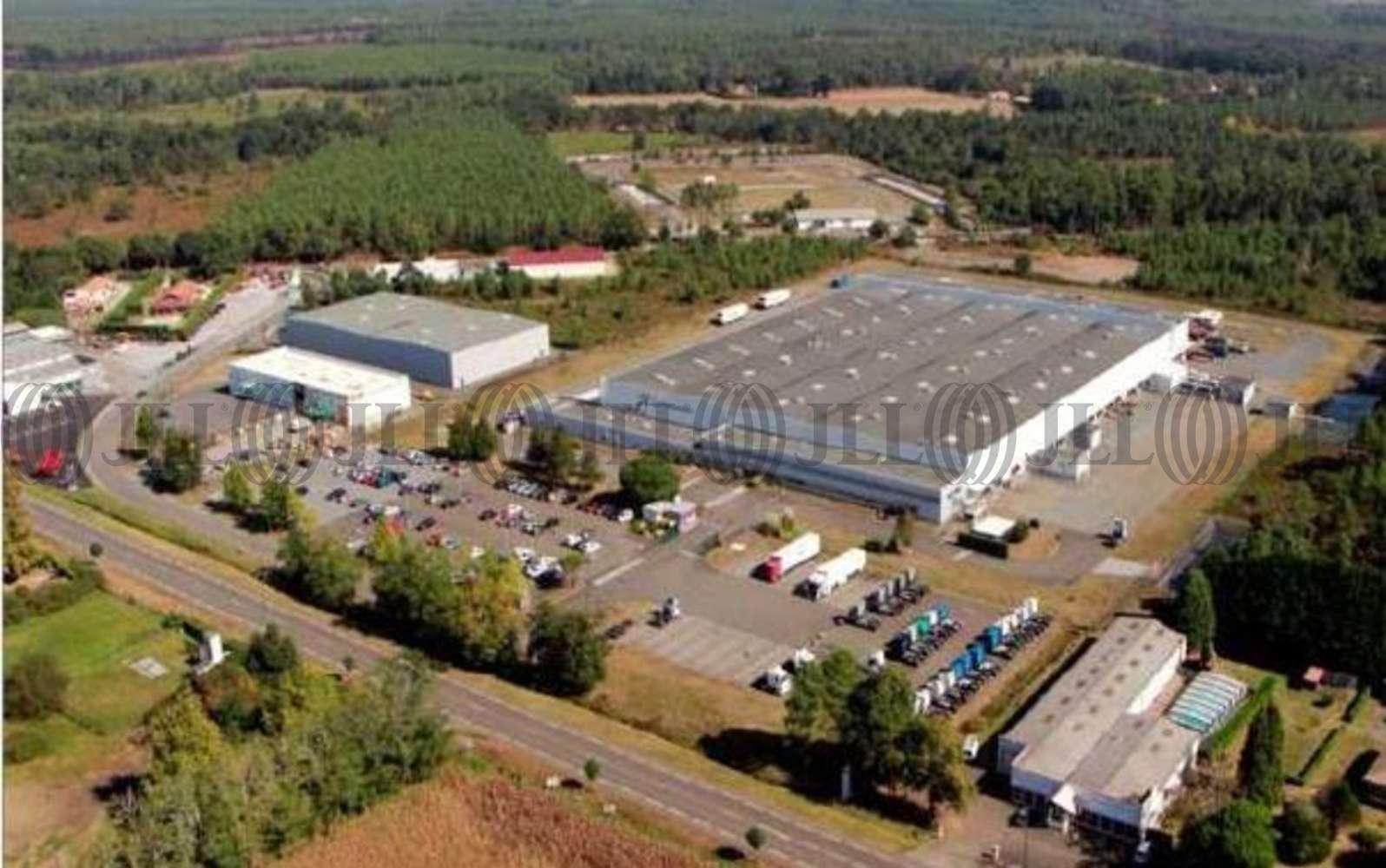 Plateformes logistiques St paul les dax, 40990 - Entrepôt logistique à vendre - Aquitaine - 9467541