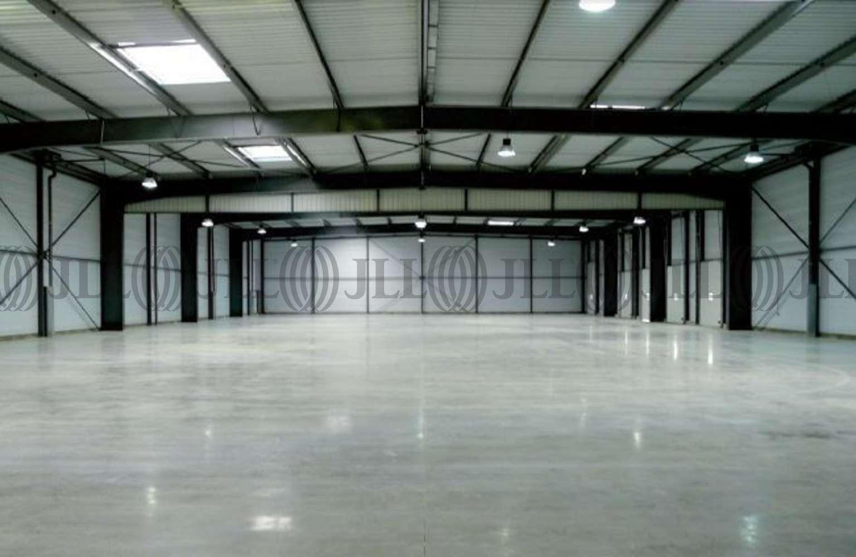 Activités/entrepôt Bailly romainvilliers, 77700 - PARC D'ENTREPRISES VAL D'EUROPE - 9455708