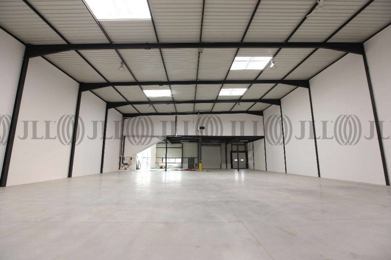 Activités/entrepôt Tigery, 91250 - IDF SUD / POLE DE SENART - 9452561