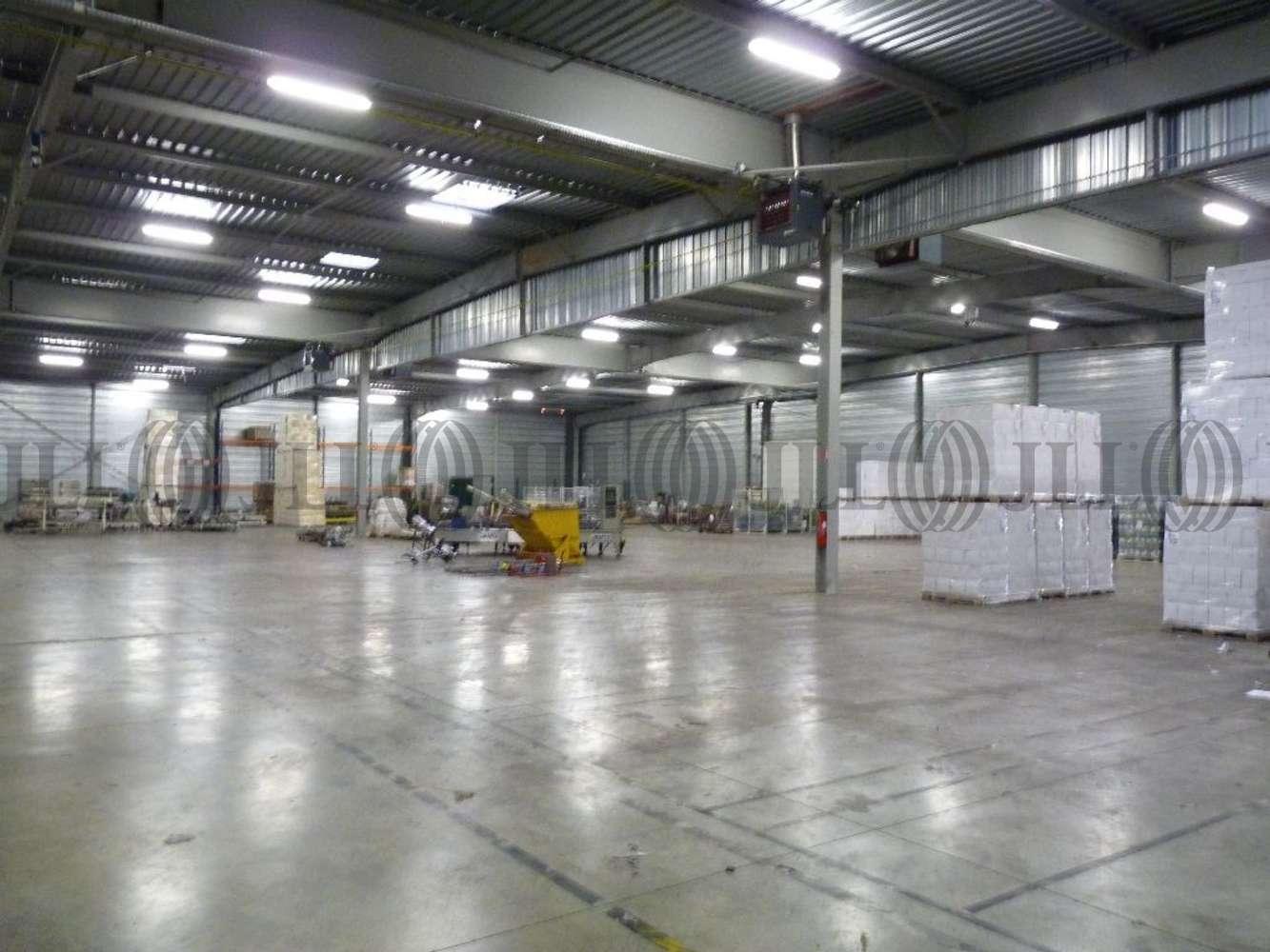 Activités/entrepôt Belleville, 69220 - Entrepôt à louer Lyon Nord - Rhône (69) - 9481190