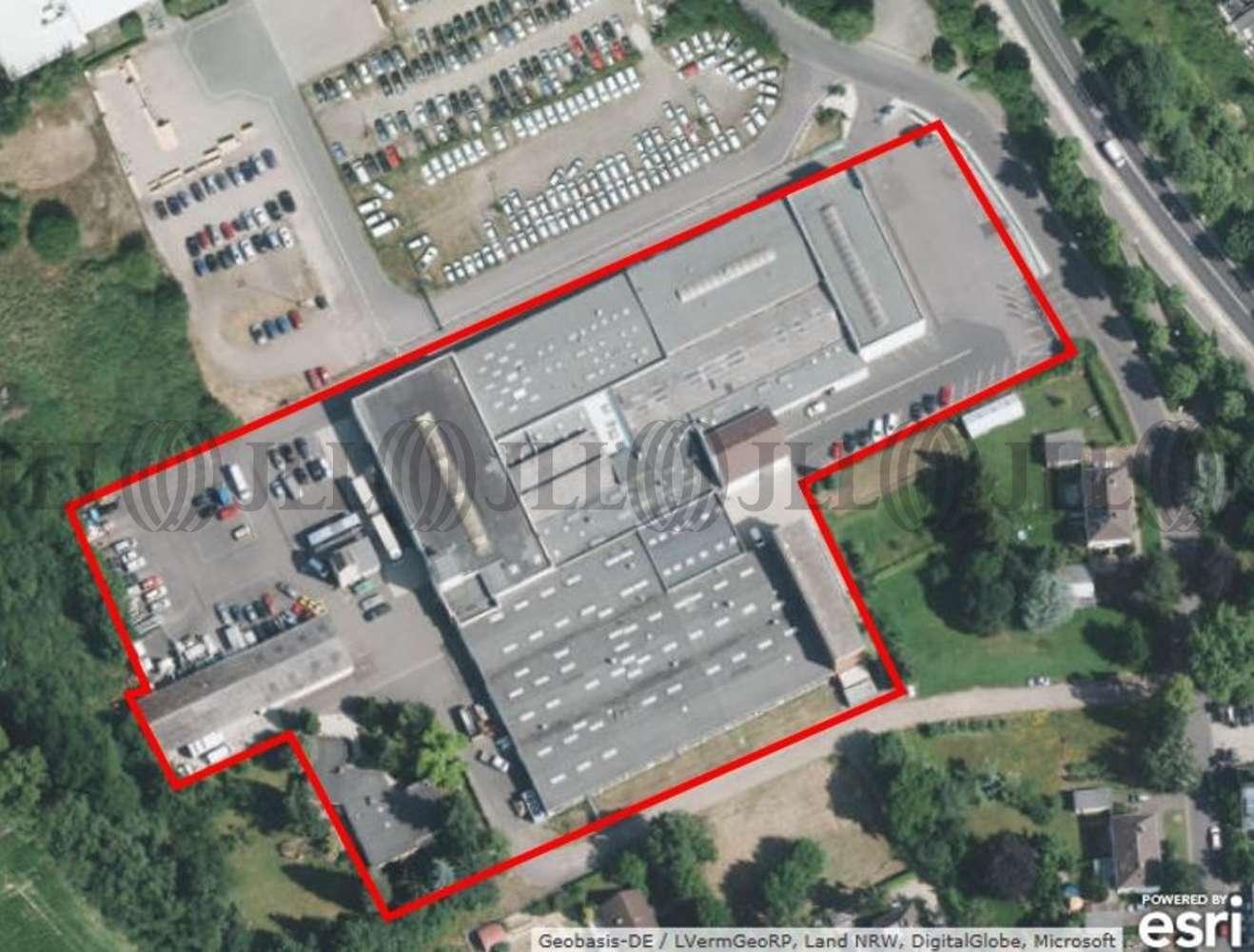 Hallen Meckenheim, 53340 - Halle - Meckenheim - K1104 - 9513367