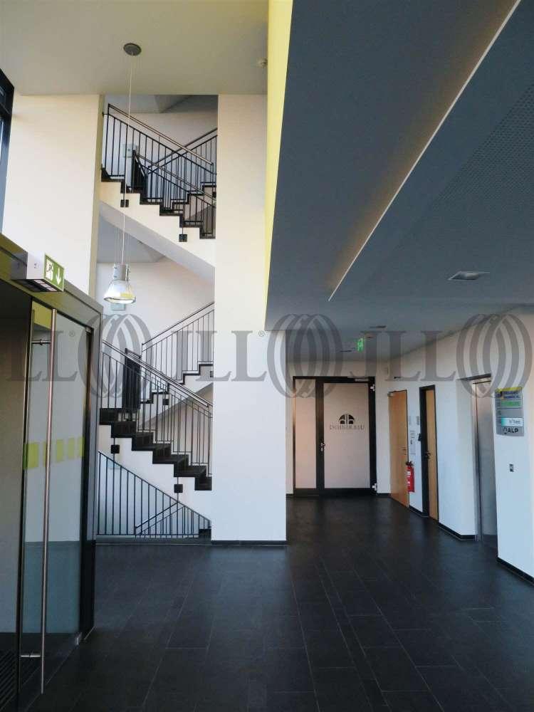 Büros Bad vilbel, 61118 - Büro - Bad Vilbel - F1113 - 9524712