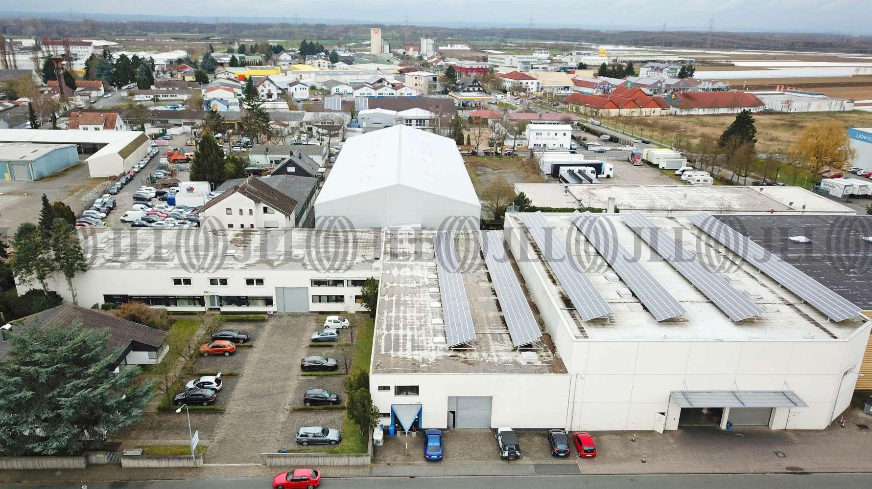 Hallen Griesheim, 64347 - Halle - Griesheim - F2409 - 9536160