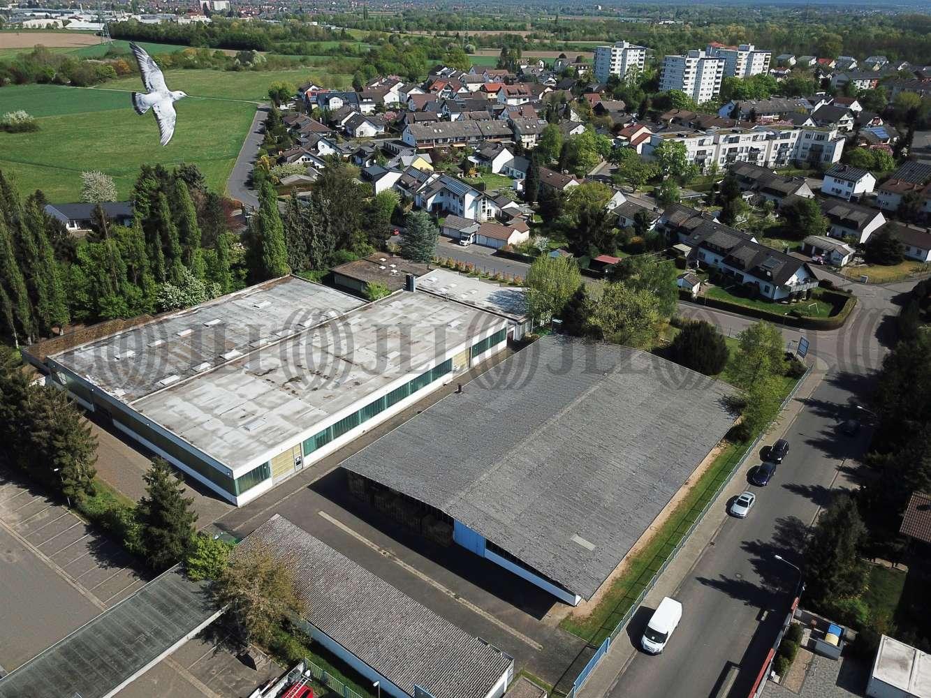 Hallen Seligenstadt, 63500 - Halle - Seligenstadt - F2416 - 9537797
