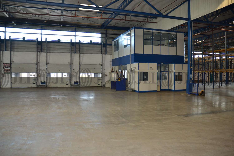 Hallen Gelsenkirchen, 45891 - Halle - Gelsenkirchen, Erle - D1598 - 9567409