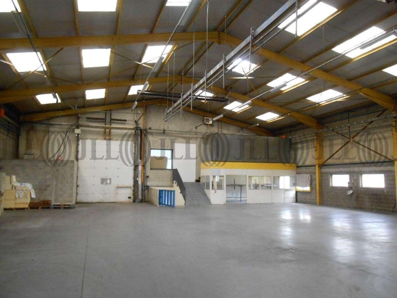 Activités/entrepôt Chassieu, 69680 - ENTREPOT À LOUER CHASSIEU - LYON EST - 9582910