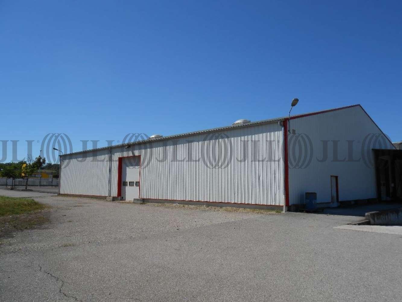 Activités/entrepôt Charvieu chavagneux, 38230 - ENTREPOT A VENDRE LYON - NORD-ISÈRE - 9590998