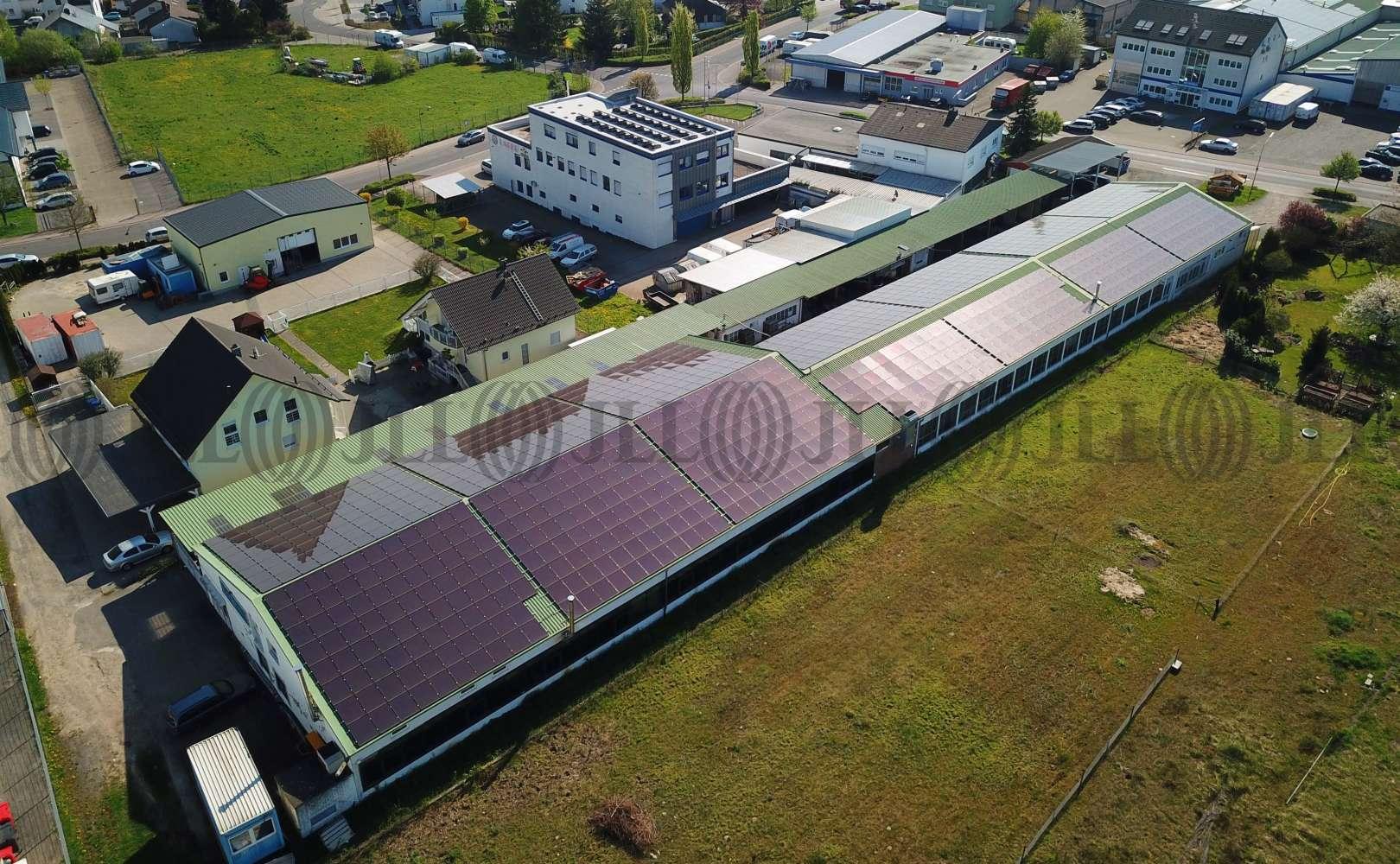 Hallen Seligenstadt, 63500 - Halle - Seligenstadt, Froschhausen - F1482 - 9591781