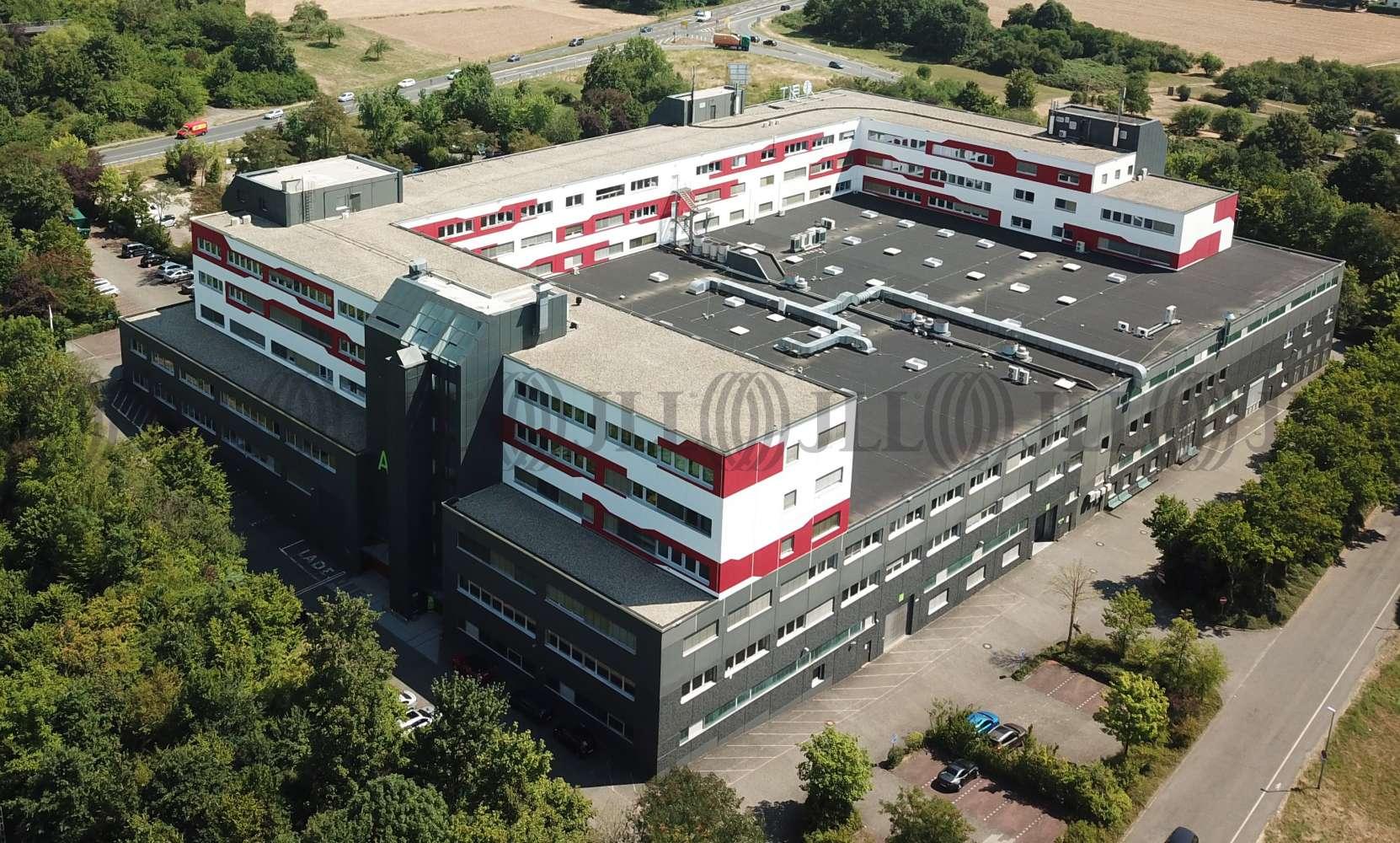 Hallen Schwalbach am taunus, 65824