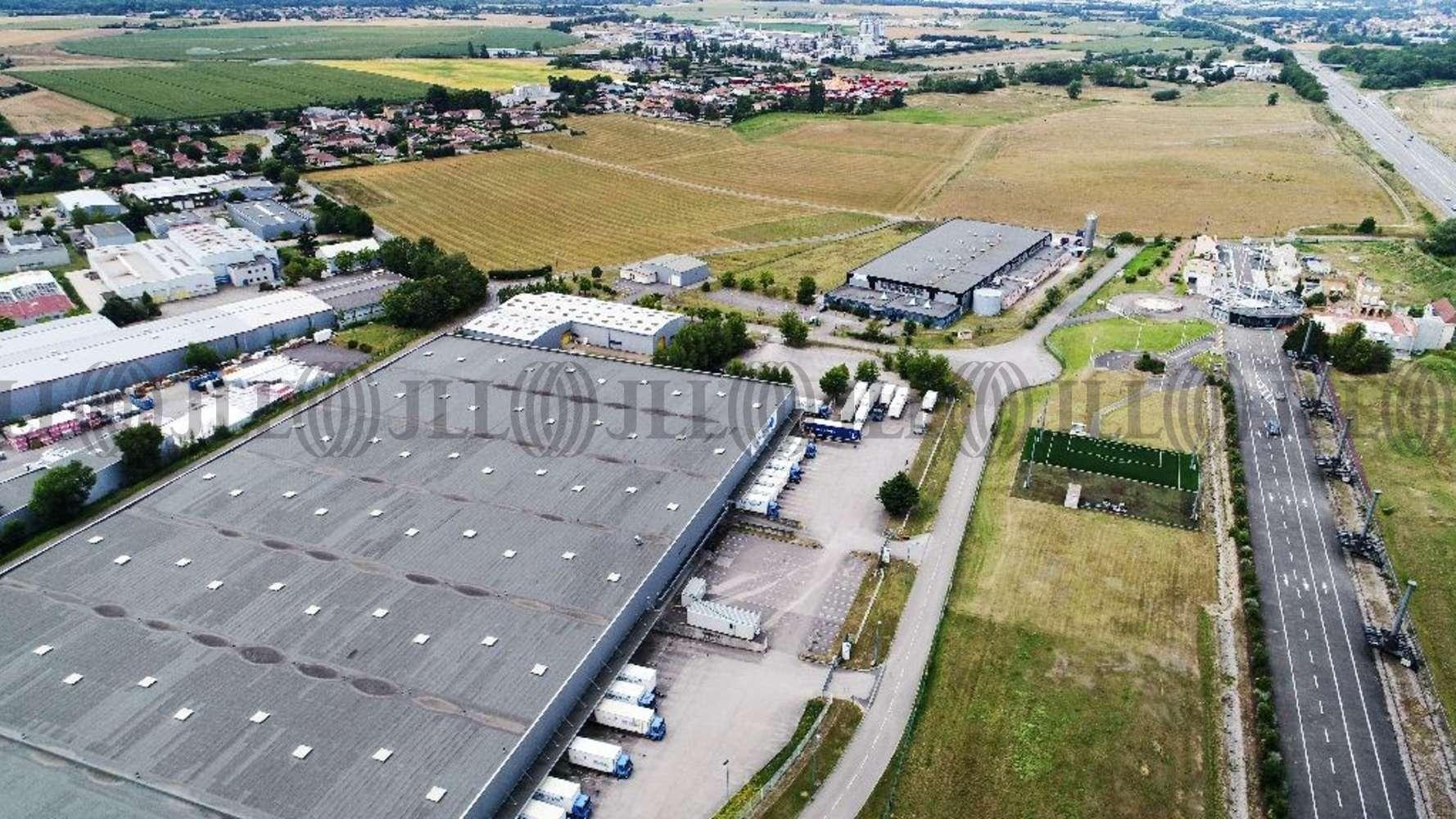 Plateformes logistiques Bressolles, 01360 - Entrepot à vendre Lyon Nord Est (Ain) - 9608849