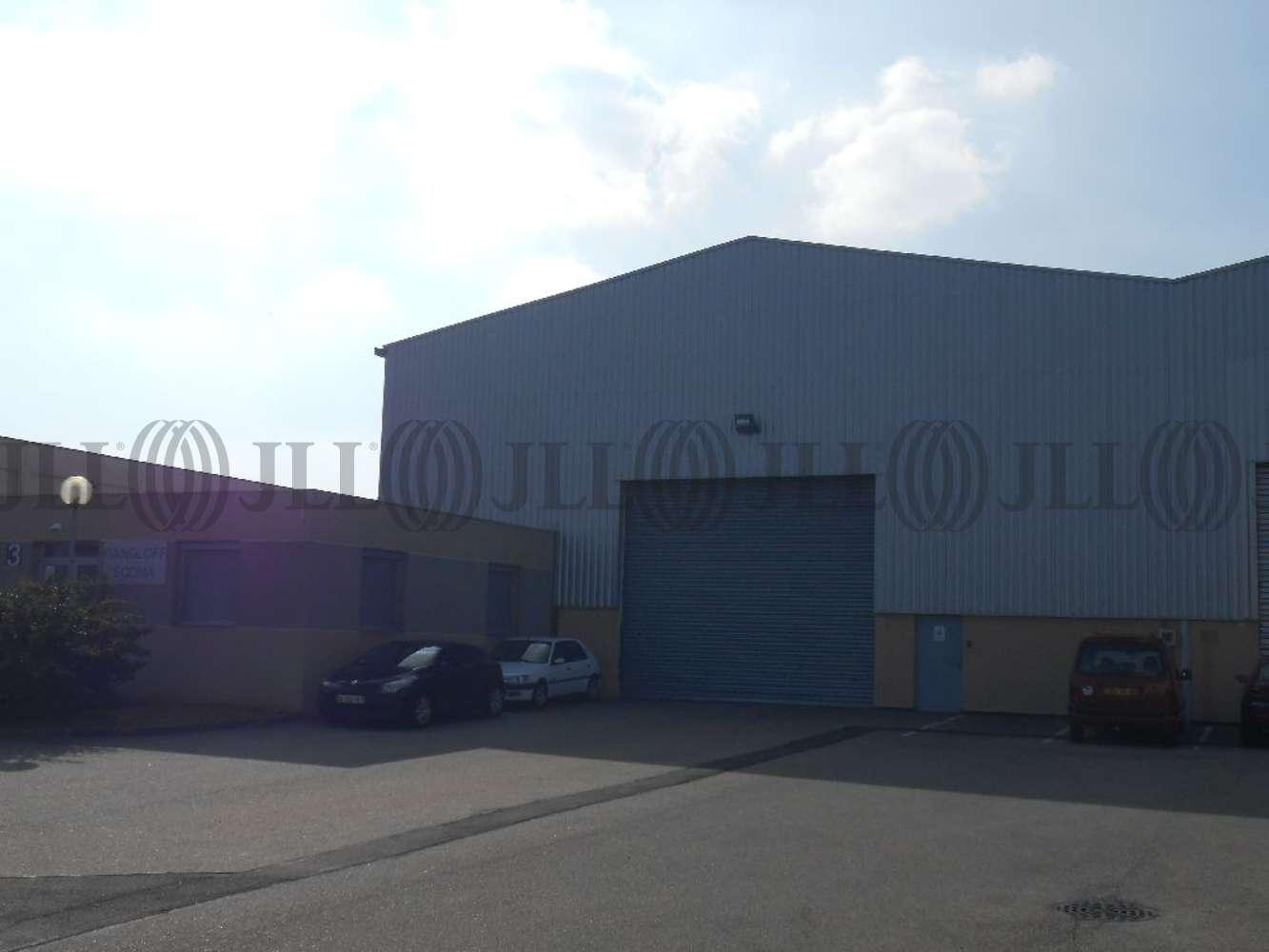 Activités/entrepôt Chassieu, 69680 - LOCATION LOCAUX D'ACTIVITÉ CHASSIEU - 9619721