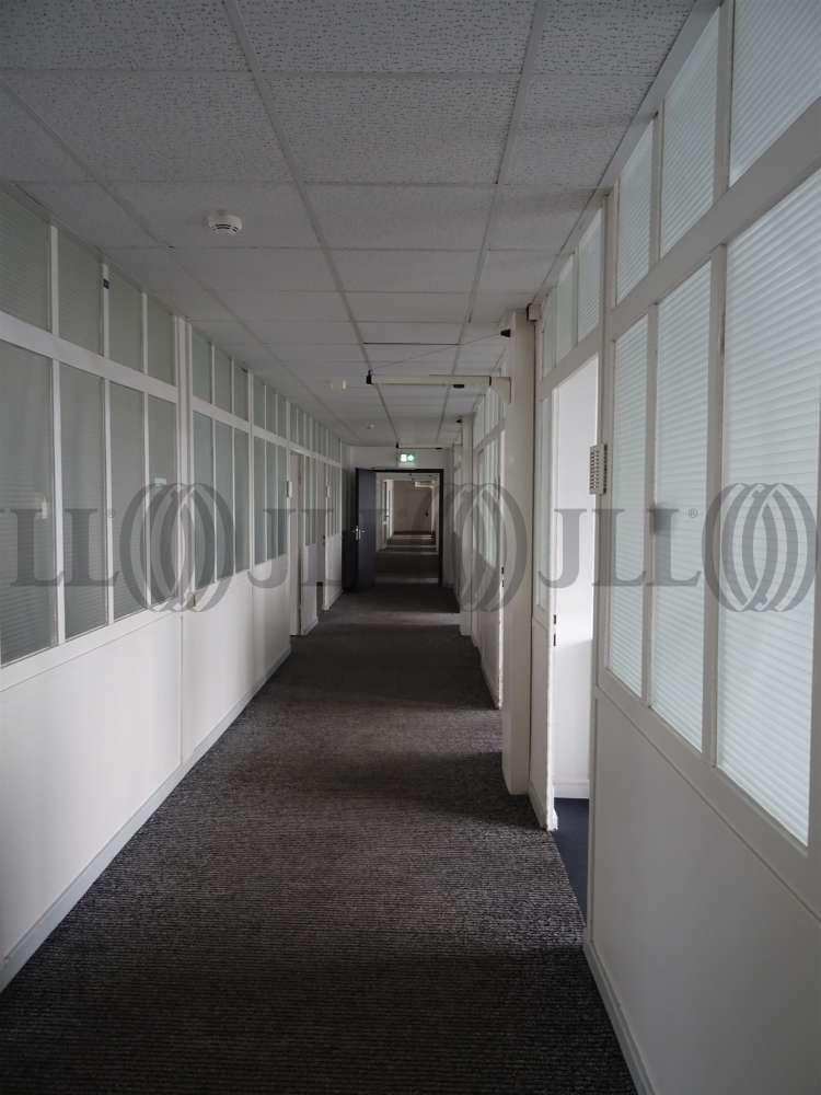 Büros Rüsselsheim am main, 65428 - Büro - Rüsselsheim am Main, Rüsselsheim - F2501 - 9621577