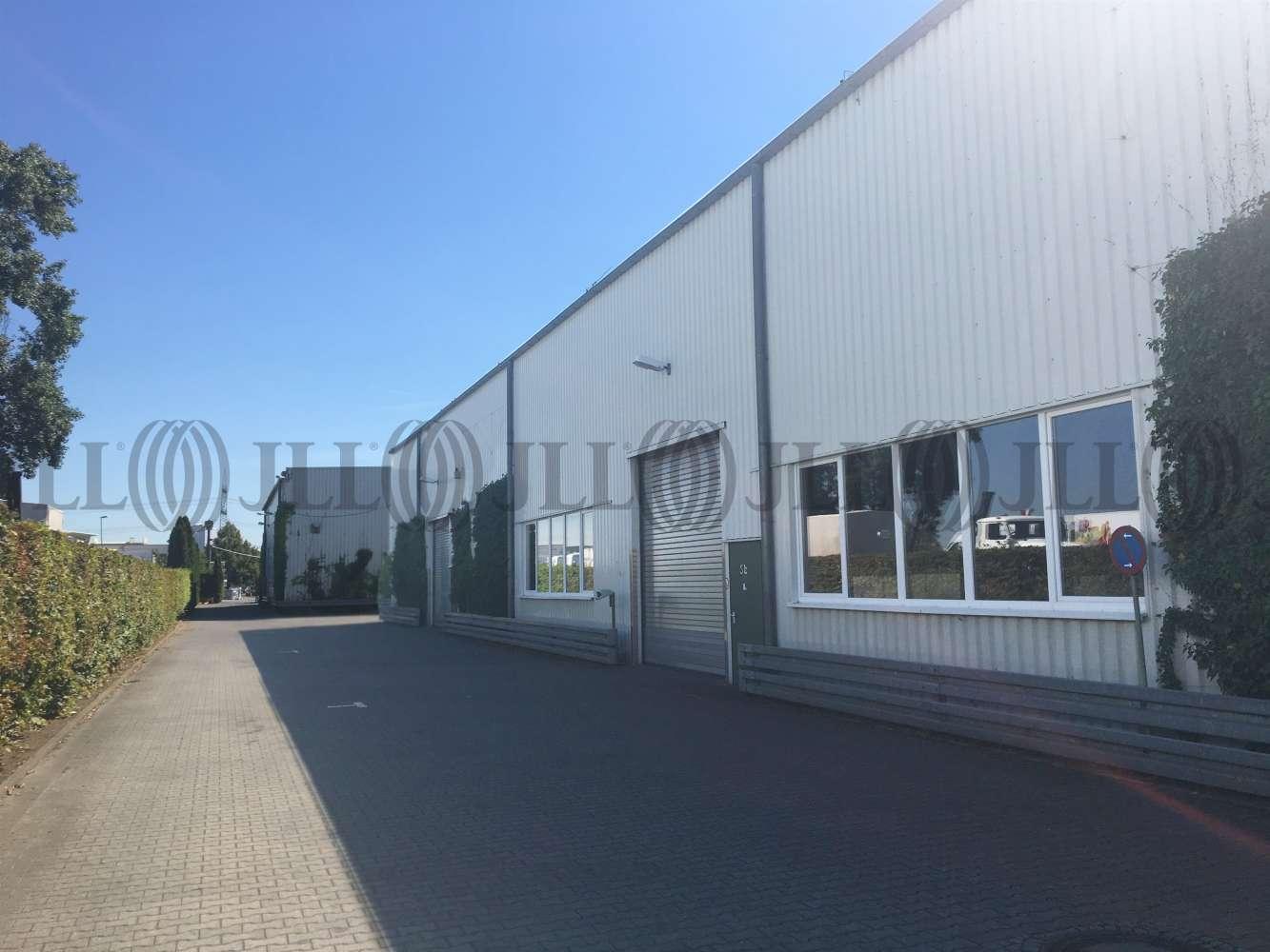 Hallen Hochheim am main, 65239 - Halle - Hochheim am Main, Hochheim - F2405 - 9748130