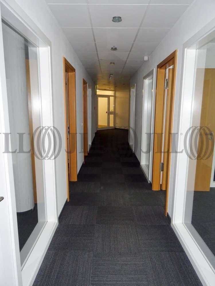 Büros Frankfurt am main, 60329 - Büro - Frankfurt am Main, Gallus - F1002 - 9765605