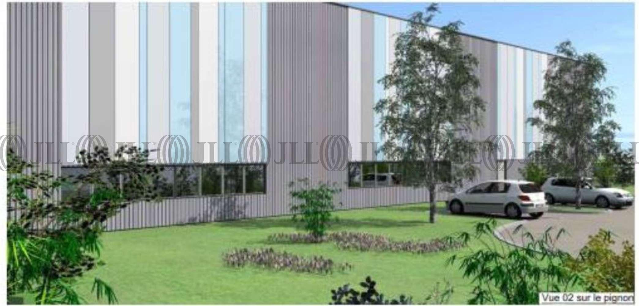Activités/entrepôt Corbas, 69960 - LOCATION ENTREPOT CORBAS - LYON EST - 9774972