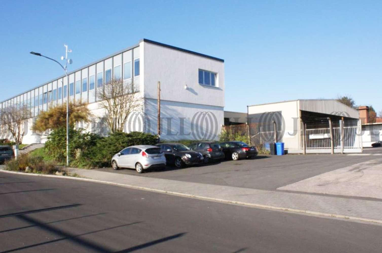 Hallen Friedberg (hessen), 61169 - Halle - Friedberg (Hessen), Friedberg - F1743 - 9840948