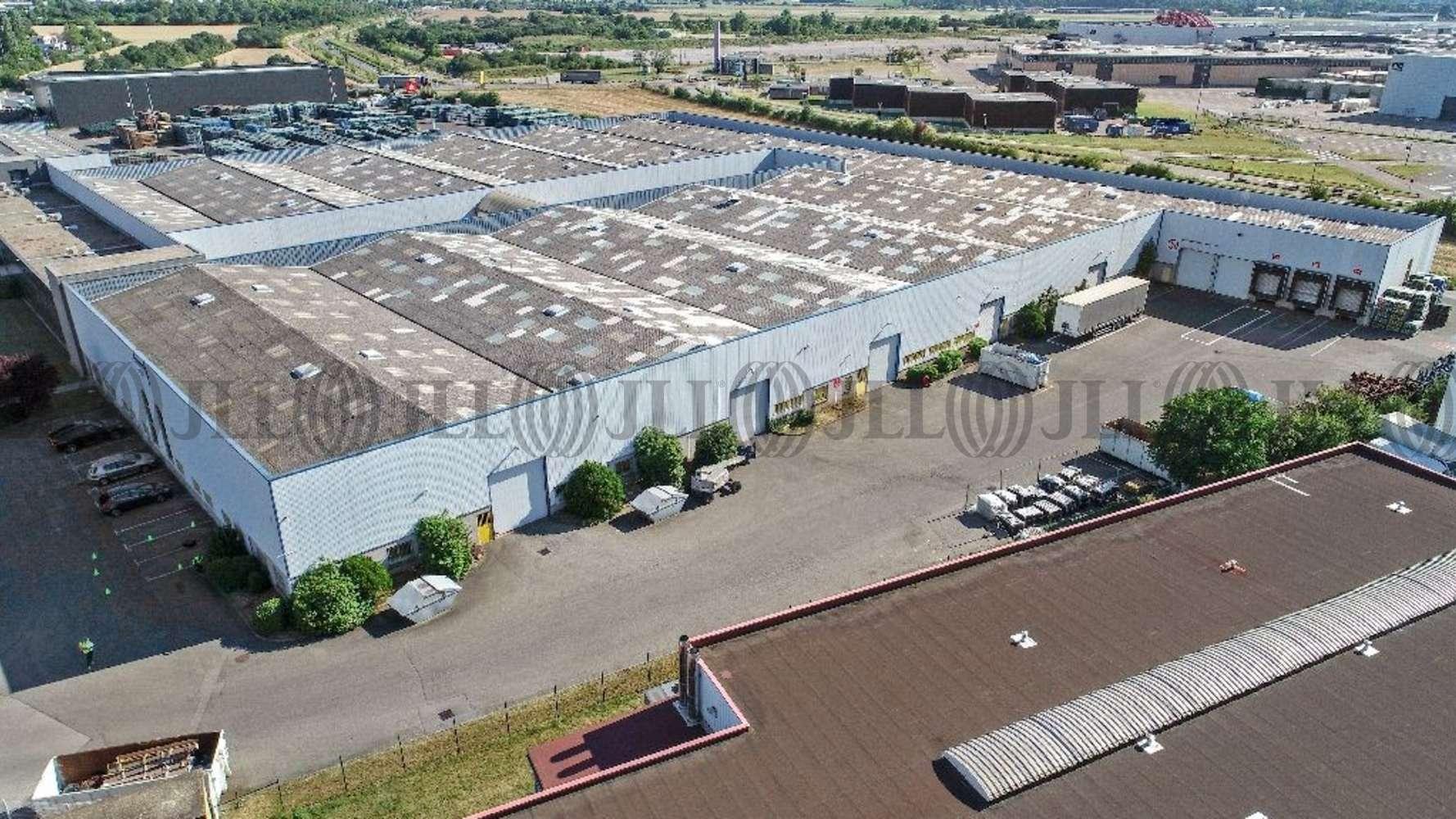 Activités/entrepôt Chassieu, 69680 - ENTREPOT À LOUER CHASSIEU - LYON EST - 9844179