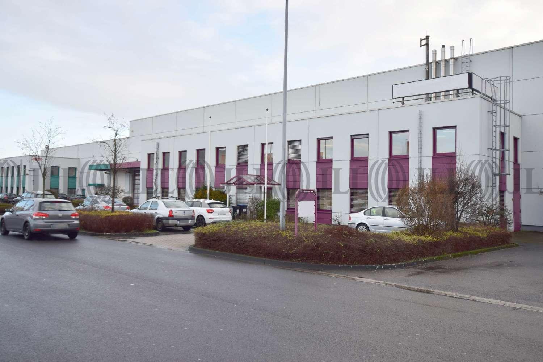 Hallen Duisburg, 47269 - Halle - Duisburg, Großenbaum - D2484 - 9887475