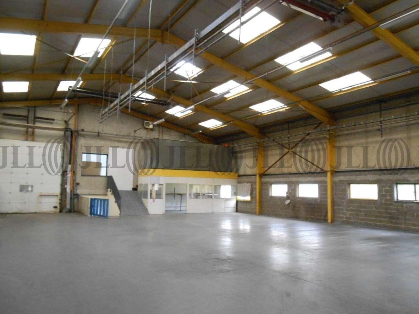 Activités/entrepôt Chassieu, 69680 - ENTREPOT À LOUER CHASSIEU - LYON EST - 9932875