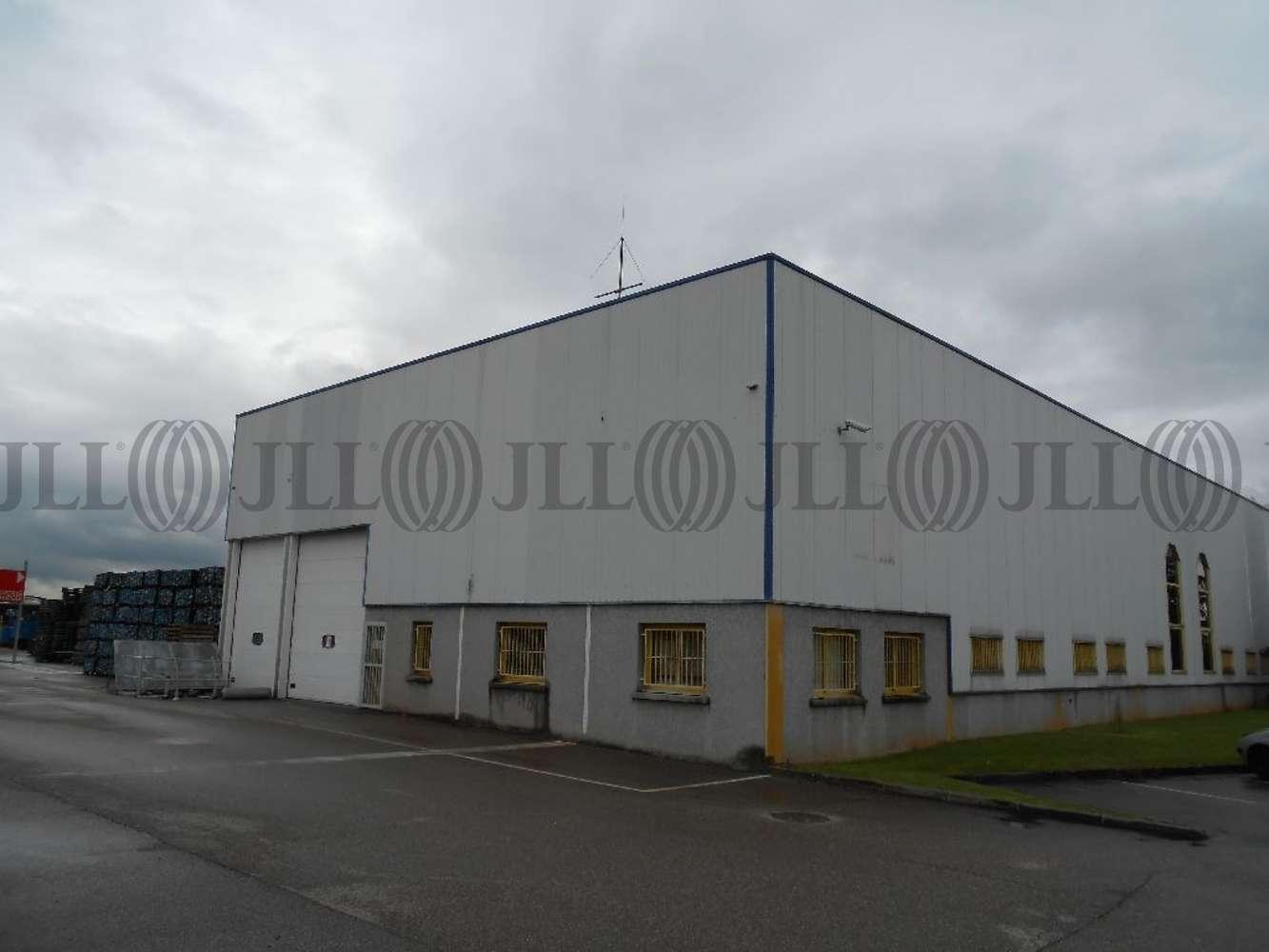 Activités/entrepôt Chassieu, 69680 - ENTREPOT À LOUER CHASSIEU - LYON EST - 9932876