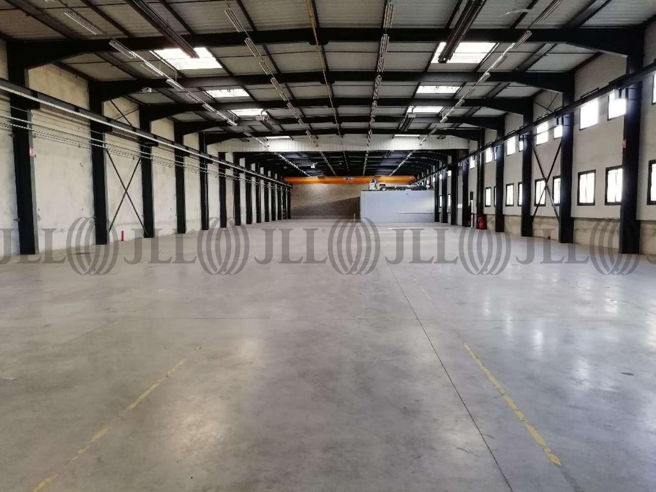 Activités/entrepôt Chassieu, 69680 - LOCATION LOCAUX D'ACTIVITÉ CHASSIEU - 9932880