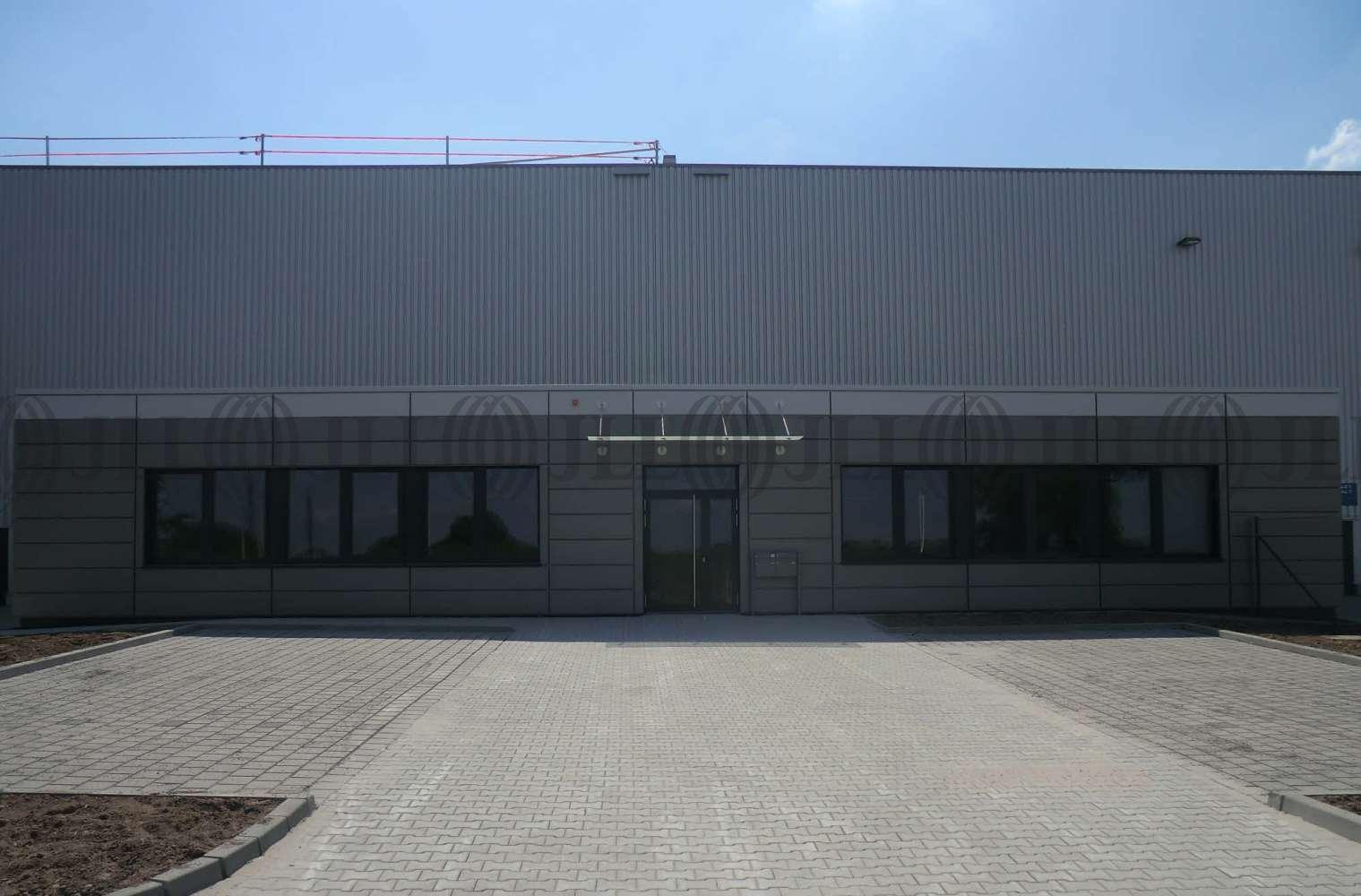 Hallen Bodenheim, 55294 - Halle - Bodenheim - F0555 - 9934292