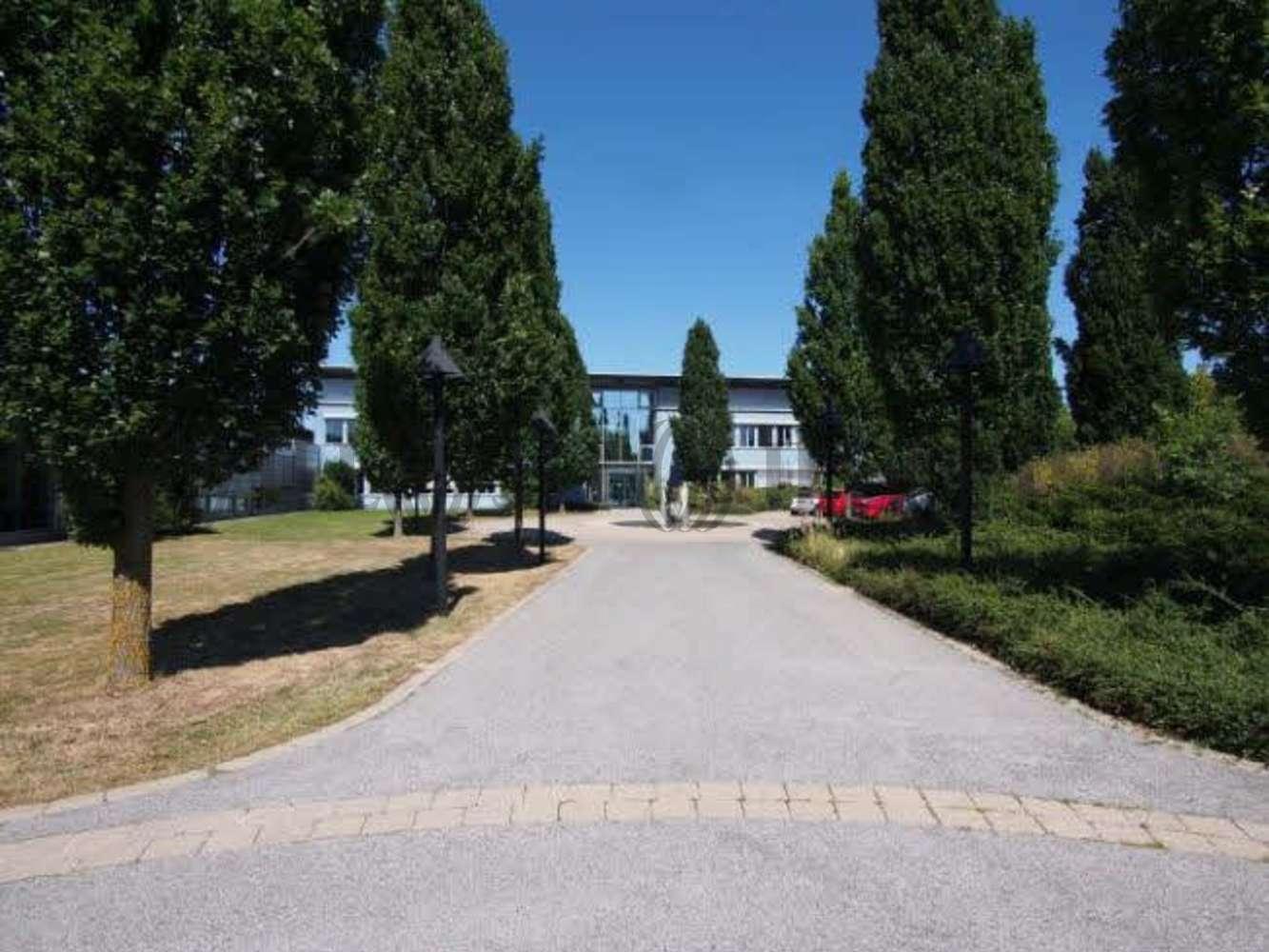 Hallen Langenzenn, 90579 - Halle - Langenzenn, Burggrafenhof - M1564 - 10008274