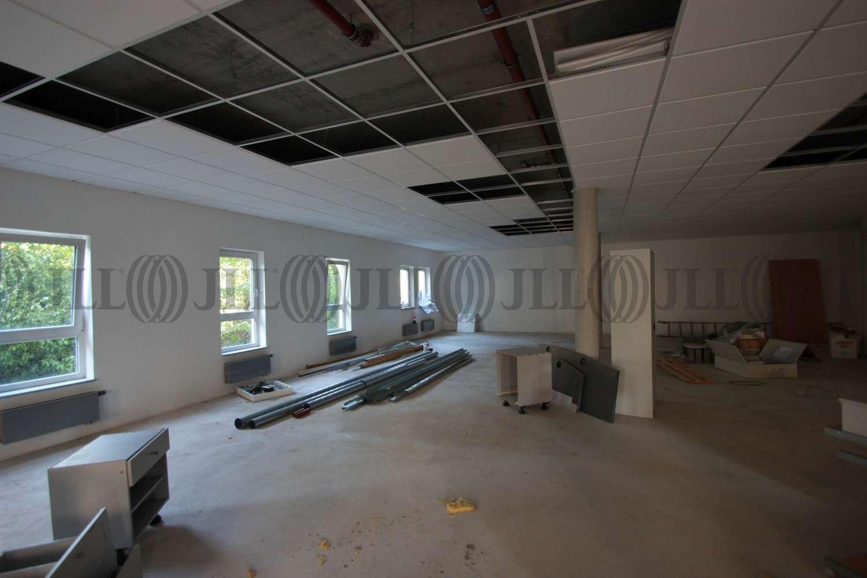 Büros Oberursel (taunus), 61440 - Büro - Oberursel (Taunus) - F1101 - 10017246
